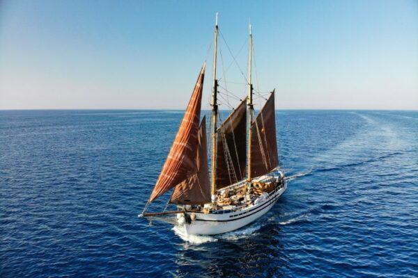 Saga Ibiza Meet the Sea