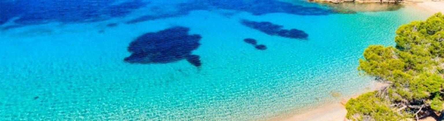 ibiza turismo sostenible oq4v80uoo8wg1xf7qfqd55zc8kl3d0y2g2cmqc16y8