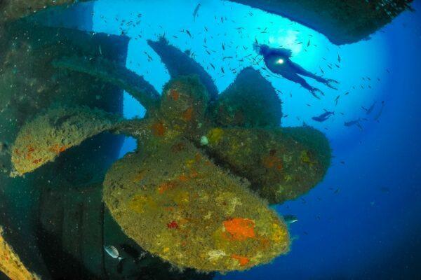 scuba diving vouchers